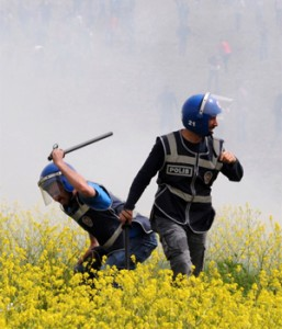 A policeman appears to beat flowers for article listing hay fever inducing flowers.