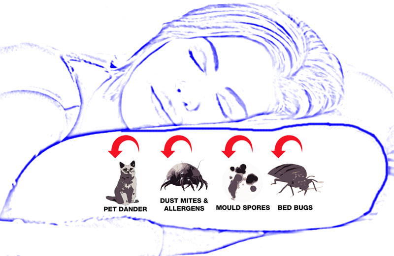 Anti-Allergy Pillow Covers block dust mites and their allergens, pet allergens, most mould spores and also, bed bugs.